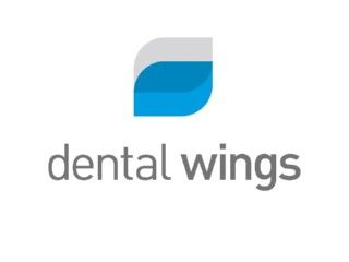 Logo Dental Wings web.jpg